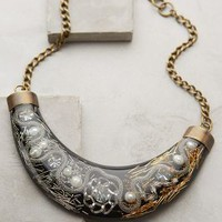 Pearled Paradise Collar Necklace by Konstantin Black One Size Necklaces