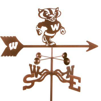 Wisconsin Badgers Collegiate Rain Gauge Garden Stake Weathervane