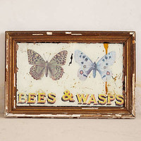 Anthropologie - Bees & Wasps By Huw Griffith