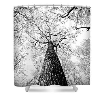 Bark - Shower Curtain