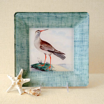 Seashore Bird Art / Coastal Wall Art / Decoupage Plate Wall Hanging / Bird Print / Beach Decor Wall Art / nautical decor beach cottage art
