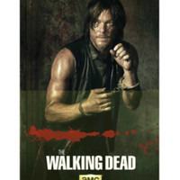 The Walking Dead Daryl Fight Poster
