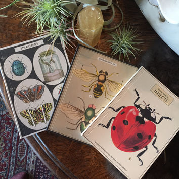 Insects - Mini Notebook Set