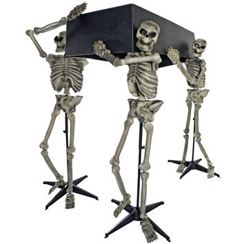 Skeleton Pall Bearers W-coffin