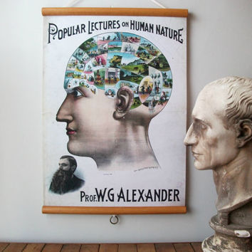 "Canvas Vintage Pull Down Style School Science Chart with Oak Wood Trim - Phrenology Head (17""x25"")"