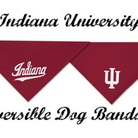 Indiana University Dog Bandana - IU dog bandana - designer dog bandana - Red and White IU Dog Bandana - Officially Licensed Product