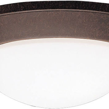 "0-033182>17""w Ceiling Space 2-Light Flush Mount Tannery Bronze"