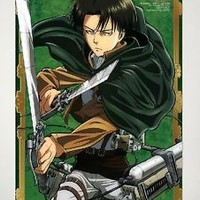 "Home Decor Attack on Titan Wall Scroll Poster Levi / Rivaille 23.6""X35.4""-JX16"