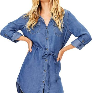Academy Chambray Dress