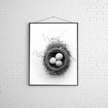 Black and White Photography Minimal Modern Eggs In Nest