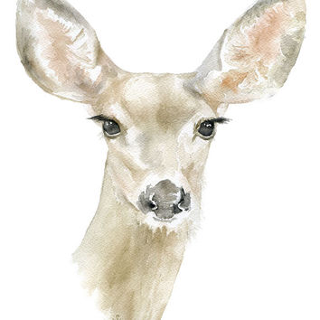 Doe Deer Watercolor