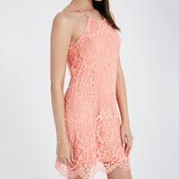 High Neck Lace Dress With Scalloped Trim | Wet Seal