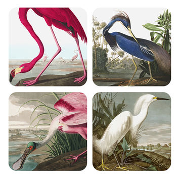 Birds of America Coasters | Vintage Inspired Fashion | Lindy Bop