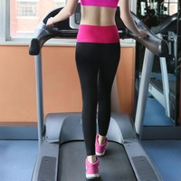 Women Yoga Elastic Gym Pants
