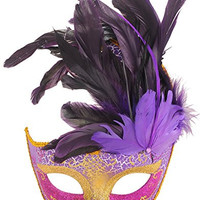 Coxeer Halloween Masquerade Feathers Beauty Princess Lace Half Face Mask Purple