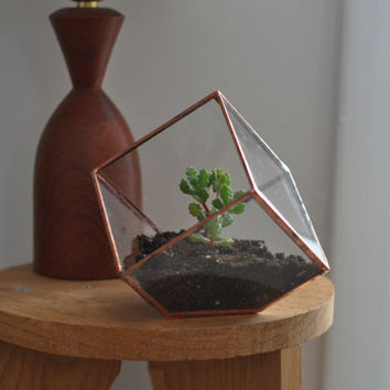Earth Terrarium Kit, small cube glass planter in copper or silver color -- stained glass -- terrarium supplies -- eco friendly