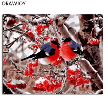 DRAWJOY Morden Framed Pictures Bird And Flower DIY Painting By Numbers Home Decor For Living Room Canvas Oil Painting GX8859