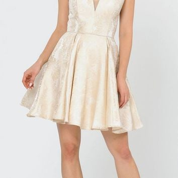 V-Neck and Back Champagne Homecoming Short Dress