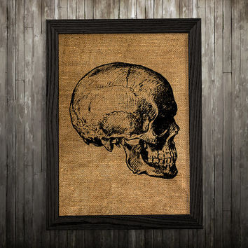 Skeleton poster Skull print Anatomy print Medical decor BLP581