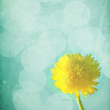 Dandelion Art Print - Yellow Aqua Surreal Bokeh Nursery Home Decor Summer Wall Art Garden Spring Photograph