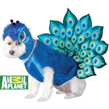 Peacock Dog Costume (Small,Multicolor)
