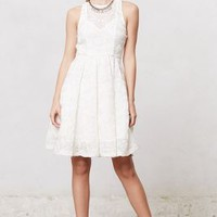 Isadora Dress by Tracy Reese White 4 Dresses