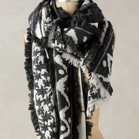 Marselis Scarf by Tolani Black One Size Scarves