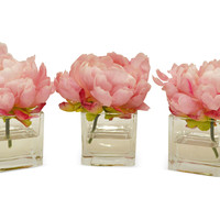 "6"" Peonies in Cubes, Faux, Set of 3, Arrangements"