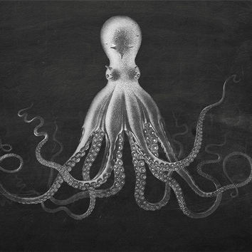 Lord Bodners Octopus Art Print Sea Squid 18x24 24x36 Vintage Nautical Decor Ocean Wall Art - Large Giclee Print
