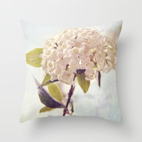 Summer Love Throw Pillow by Dena Brender Photography