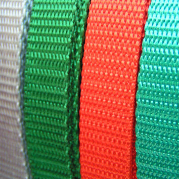 "Teal, Orange, Green, Silver, 1/2"" Wide Nylon Webbing, A lovely webbing style with many uses. Standard Weight Webbing."