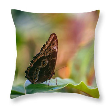 Butterfly Throw Pillow, Butterfly Pillow Cover, Butterfly Seat Cushion, Nature Photo Art Indoor Pillow, Nature Outdoor Seat Cover