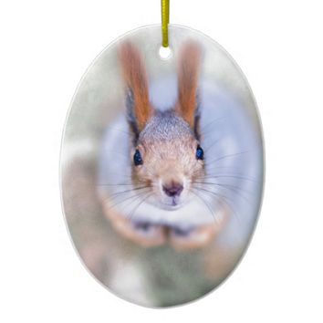 Squirrel looks at you from the bottom up ceramic ornament
