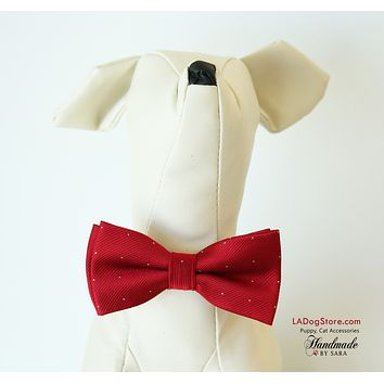 Red dog bow tie collar, Bow attached to collar, Puppy, Cat accessory