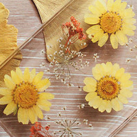 Sunflower Handmade pressed flower phone Case for iPhone 6 6plus 5S Samsung note4