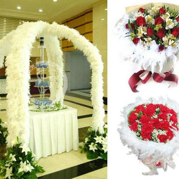 Hot Wedding Party Flower 2M Feather Boa Fluffy Craft Costume Dressup Home Decor = 1931975236