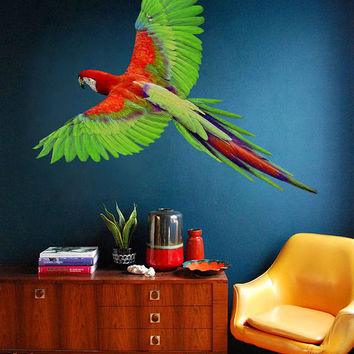 parrot wall Decals parrot wall decor parrot Full Color wall Decals veterinary clinic decor Home Decor for kids room cik2205