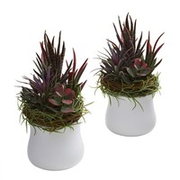 SheilaShrubs.com: Mixed Succulent w/White Planter (Set of 2) 4982-S2 by Nearly Natural : Artificial Flowers & Plants