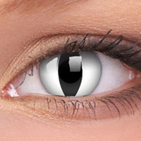 White Cats Eyes Contact Lenses, White Cat Eye Contacts | EyesBright.com