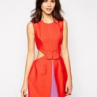 BCBGMAXAZRIA Dress with Contrast Lining and Bow