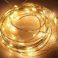 10 ft 30 LED Warm White Copper String Light 10 feet long Fairy Lights Battery Operated Waterproof Wedding Centerpiece