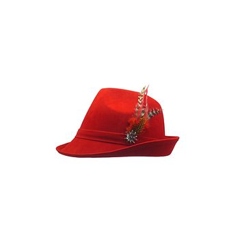 "Red ""German Hunter"" Hat Fedora And Edelweiss & Feather"