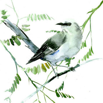 Mockingbird art original watercolor painting 12 x 9 in gray white olive green wall art mockingbird lover