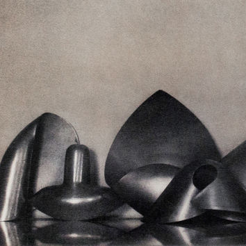"SHEILA METZNER ""MOUILLE SHAPES"" PHOTOGRAPH, 1986"