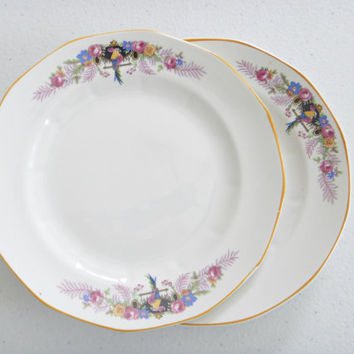2 Bird Dessert Plates Antique Penn China