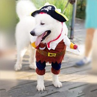 The Pacific Pirate Pup!