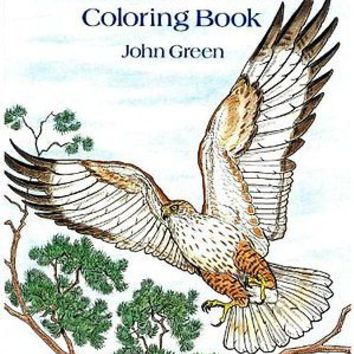 Birds of Prey Adult Colouring Book Creative Art Therapy Calm Nature Wildlife