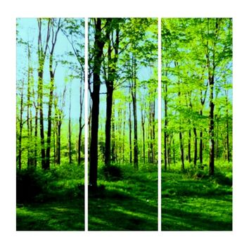 Down to Earth or in the Trees 3 Piece Canvas Set Triptych