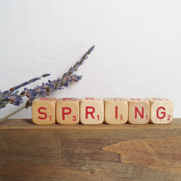 Vintage Letter Cubes SPRING Home Decor Wooden Red Supplies Crafts Gift Idea Shabby Chic