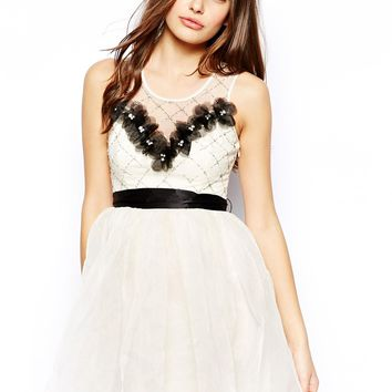 Lipsy VIP Skater Dress with Floral Applique